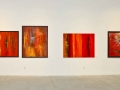 Solo Expo De Hal 2014 my 4 red ones